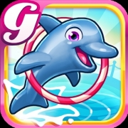 my-dolphin-show-3